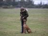 Anaya til unghundetræning i Vallensbæk foto: Benny Fischer