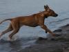 Anaya 5 måneder på vej op af vandet